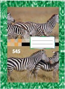 Sešit A5 545 čtvereček 40 stran